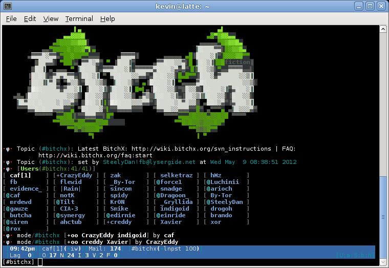 Screenshot-bitchx.png